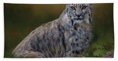 Bobcat On Alert Hand Towel