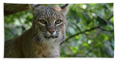 Bobcat Staring Contest Bath Towel