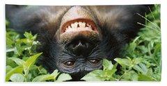 Bonobo Smiling Bath Towel