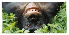Bonobo Smiling Hand Towel