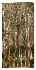 Bath Towel featuring the photograph Boranup Forest  by Ivy Ho