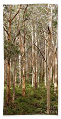 Bath Towel featuring the photograph Boranup Forest Portrait by Ivy Ho