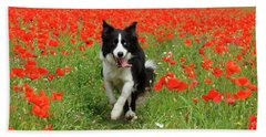 Border Collie In Poppy Field Bath Towel