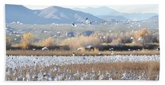 Bosque Del Apache Snow Geese Landscape Bath Towel by Andrea Hazel Ihlefeld