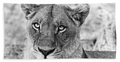 Botswana  Lioness In Black And White Bath Towel