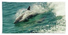 Bottlenose Dolphin Hand Towel