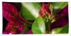 Bougainvillea Hand Towel by Linda Shafer