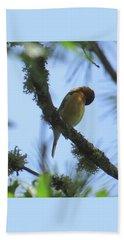 Bird Of Pray - Images From The Garden Hand Towel by Brooks Garten Hauschild
