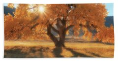 Hand Towel featuring the photograph Boxelder's Autumn Tree by Amanda Smith