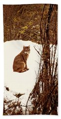 Bath Towel featuring the photograph Bobcat In Snow by Peggy Collins
