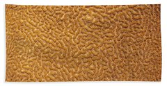 Brain Coral 47 Hand Towel by Michael Fryd