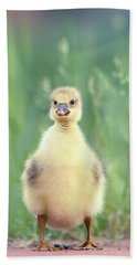 Brave New Baby - Gosling Ready To Conquer The World Hand Towel