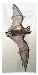 Brazilian Free-tailed Bat Hand Towel