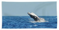Breaching Humpback Off Bermuda Bath Towel by Jeff at JSJ Photography