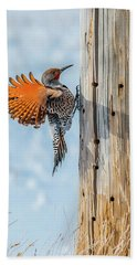 Brilliant Northern Flicker Woodpecker Hand Towel by Yeates Photography