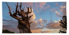 Bristlecone Pine Sunset Hand Towel