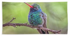Broad-billed Hummingbird 3652 Hand Towel