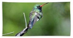 Broad-billed Hummingbird Hand Towel