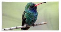 Broad-billed Hummingbird Portrait Hand Towel