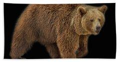 Brown Bear 5 Hand Towel