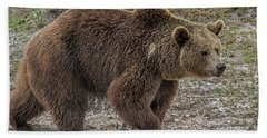 Brown Bear 6 Hand Towel