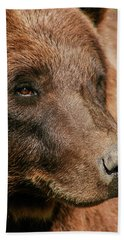 Brown Bear Hand Towel