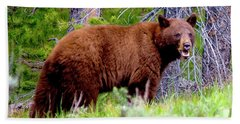 Brown Bear Bath Towel