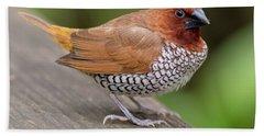 Brown Bird Hand Towel