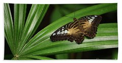 Brown Clipper Butterfly -parthenos Sylvia- On Frond Bath Towel