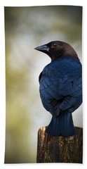Brown-headed Cowbird Bath Towel