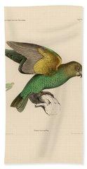 Brown-headed Parrot, Piocephalus Cryptoxanthus Bath Towel