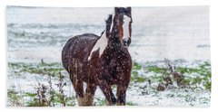Brown Horse Galloping Through The Snow Hand Towel