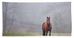 Brown Horse In Virginia Fog Hand Towel