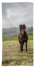 Bath Towel featuring the photograph Brown Icelandic Horse by Edward Fielding
