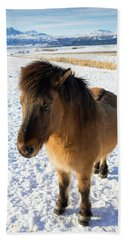 Bath Towel featuring the photograph Brown Icelandic Horse In Winter In Iceland by Matthias Hauser