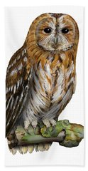 Brown Owl Or Eurasian Tawny Owl  Strix Aluco - Chouette Hulotte - Carabo Comun -  Nationalpark Eifel Hand Towel
