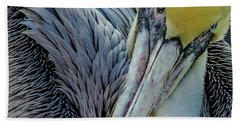Hand Towel featuring the photograph Brown Pelican by Bill Gallagher