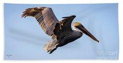 Brown Pelican In Flight - Pelecanus Occidentalis  Hand Towel