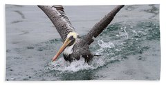 Brown Pelican Landing On Water . 7d8372 Hand Towel