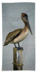Brown Pelican Hand Towel