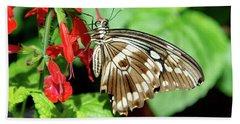 Brown Swallowtail Butterfly Bath Towel