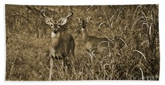 Buck And Doe In Sepia Hand Towel