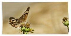 Buckeye Butterfly Hand Towel by Steven Parker