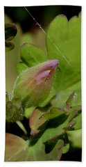 Bud And Spider Silk Hand Towel