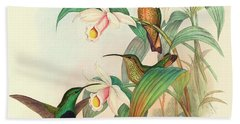 Buff Tailed Velvet Breast Hand Towel by John Gould