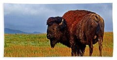 Hand Towel featuring the photograph Buffalo 006 by George Bostian