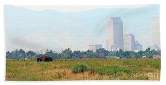 Buffalo And Colorado State Capitol  0056 Bath Towel