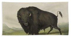 Buffalo Bull Grazing 1845 Hand Towel