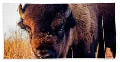 Buffalo Face Bath Towel by Jay Stockhaus