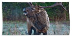 Bugling Elk Bath Towel